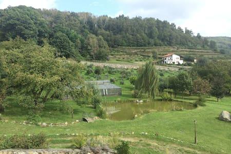 monolocale soppalcato in collina  - Bollengo