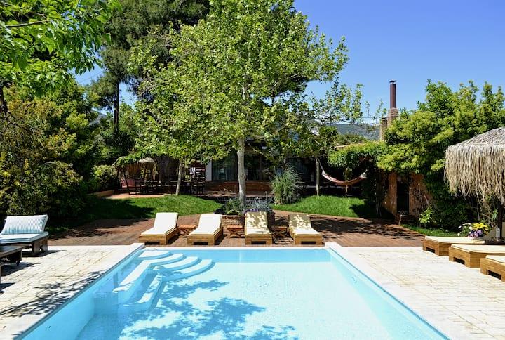 Our beloved nest  Turdus merula( 14 guests villa )