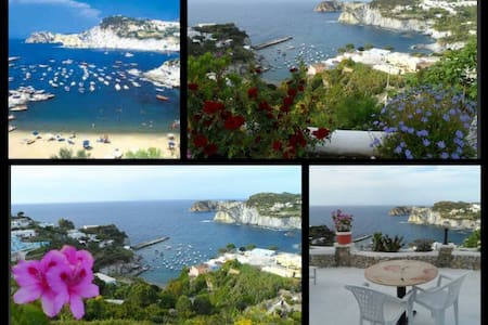 seaview appartment with terrace - Ponza