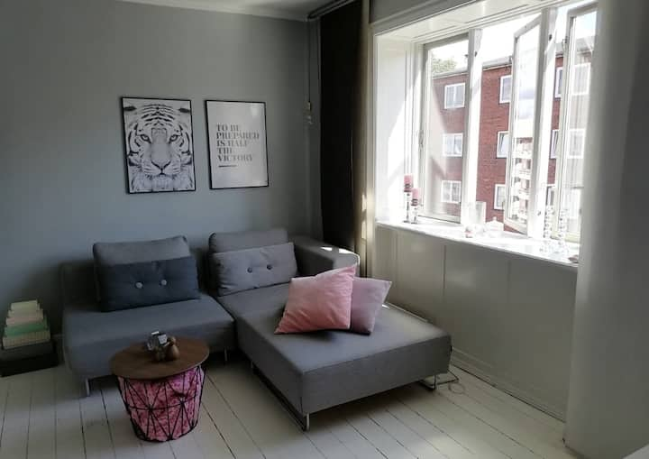 Cosy apartment on Amager