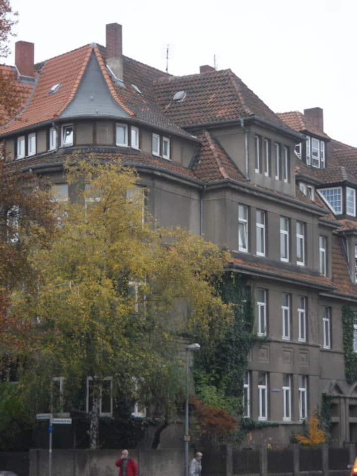 Über den Dächern von Hameln