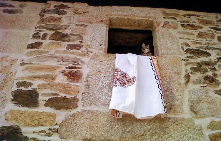 Cottage close St. Jame´s Portuguese Way