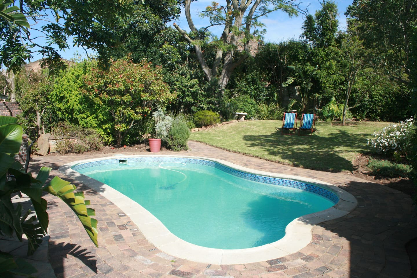 Swimming pool with lovely spacious garden with lots of bird life