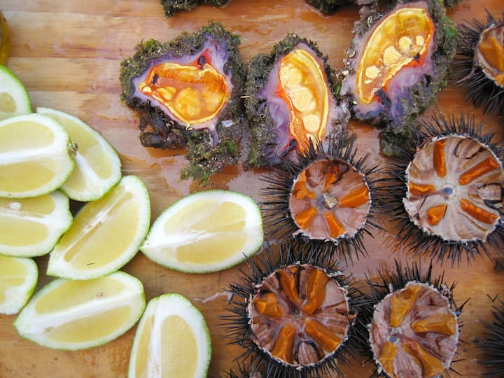 Taste fresh seafood delicacies!