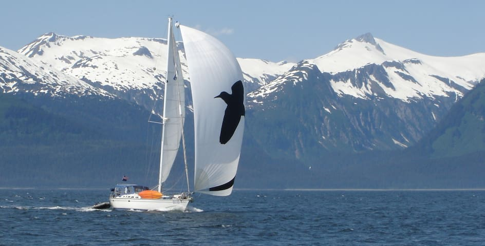 Private berth on charter sailboat - Sitka - Boot