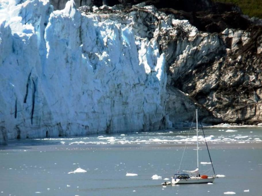 Glacier Bay trips and our Endicott Arm adventure take us up to the glaciers.