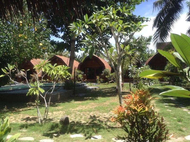 Dream Hotel villa