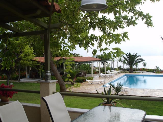 (A1) studio 1(35 m2),priv. beach,swim. pool and . - Livanates - Ortak mülk