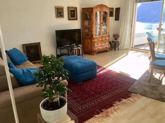 Il salone, elegante e di stile crea un'atmosfera calda e confortevole.. Das elegante, stilvolle Wohnzimmer sorgt für eine gemütliche Atmosphäre... Livingroom, elegantly furnished creats a delicious warm  atmosphere...