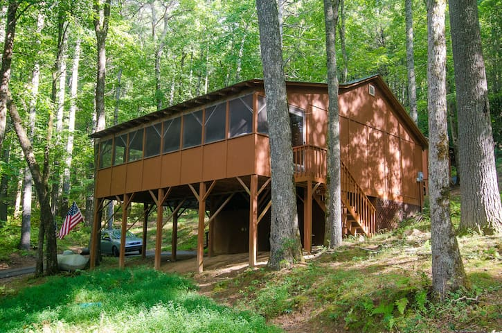 Toccoa Treehouse Cabin In the National Forest