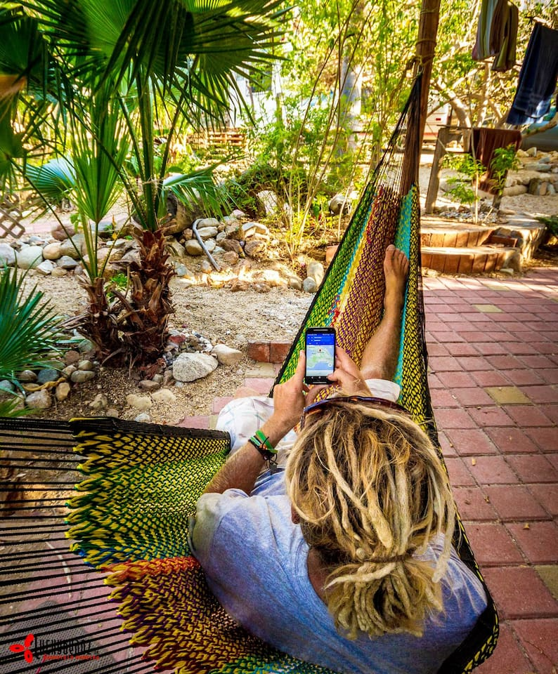 chill in the hammock with great wifi!