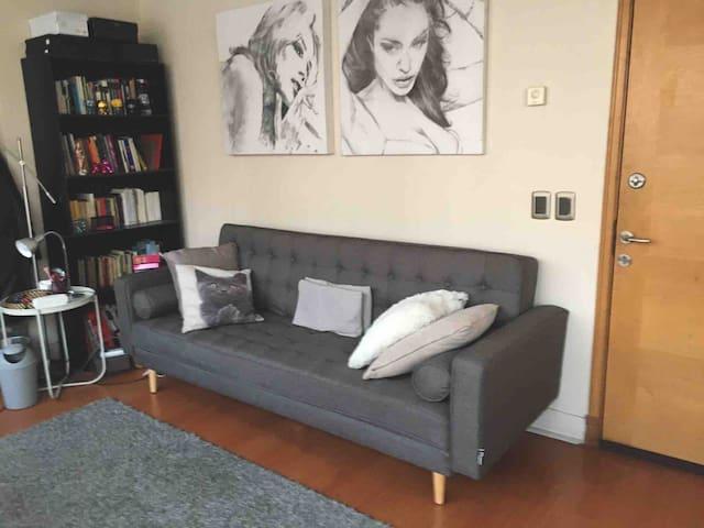 Sala de estar Sofá cama de 2 plazas