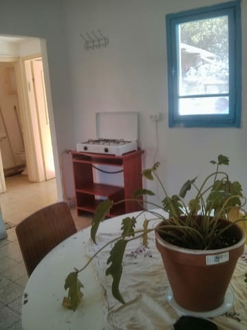 Apartment in the galille - Haifa District - Apartment