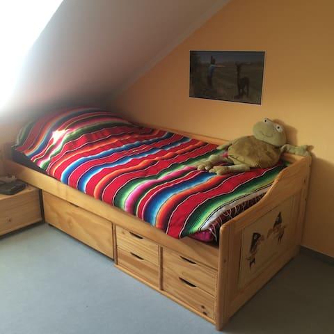 Gemütliches Dachzimmer in der Neustadt, Nähe HBF!