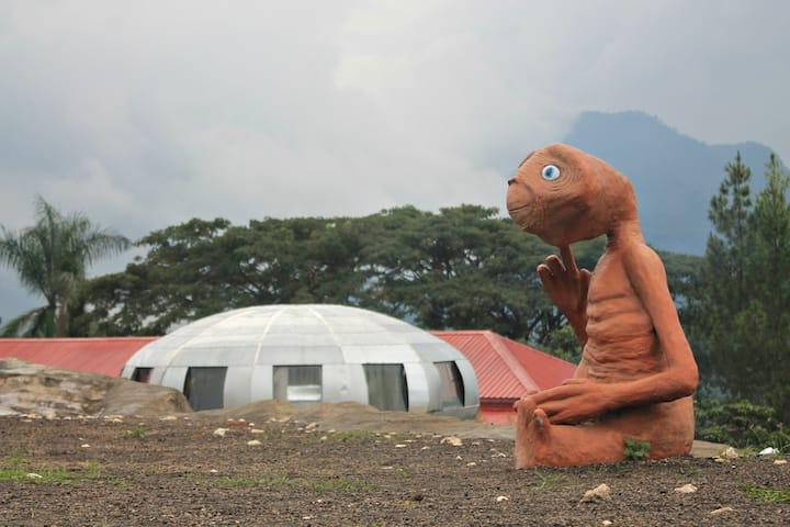 UFO Park & Capsule