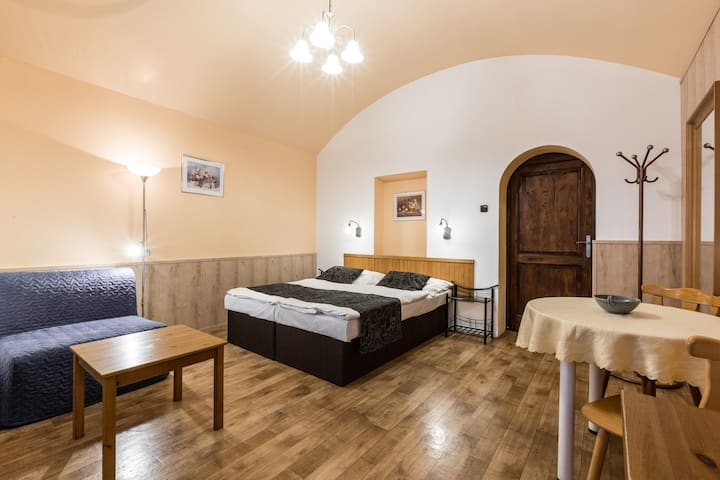 Cozy apartment for 3 persons near city center