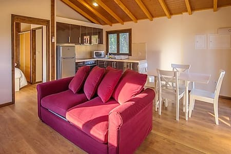 Beautiful chalet with shared pool