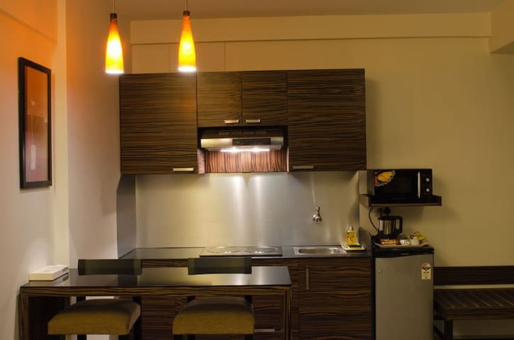 1 BHK apartment with kitchen in pune for 2-3 guest