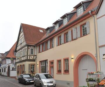 Wohnen auf Zeit im historischen Ambiente (Whg. 2) - Schriesheim - Appartement