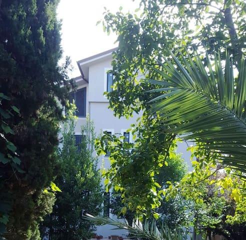 Appartamento nel verde a Villa Giuliani