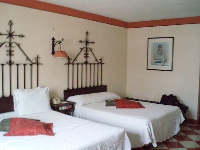 SCENIC PRIVATE TOP FLOOR GORGEOUS COLONIAL VILLA - Granada - Apartamento