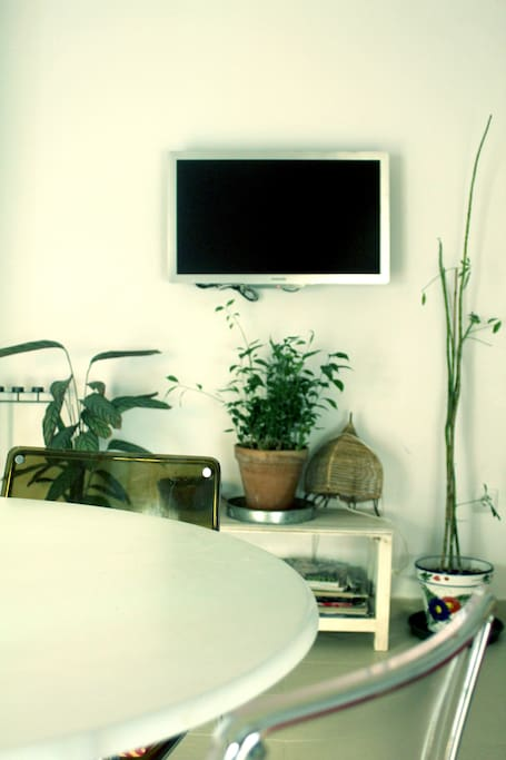Apartment in center of Alameda