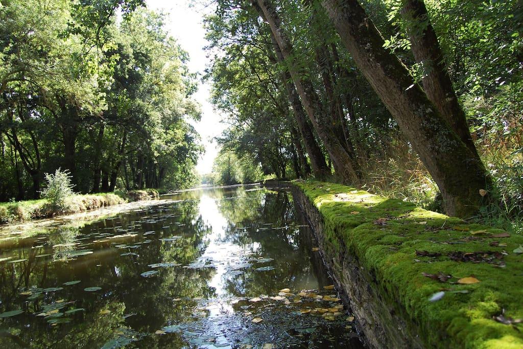 La rivière Chère qui coule sous le moulin.