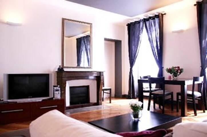 2 Bedroom Apartment Rue Rivoli