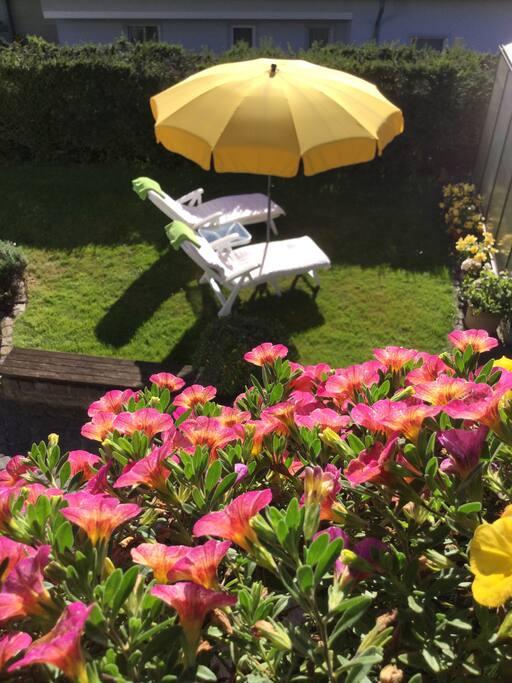 Liegewiese mit Relaxliegen Sonnenschirm und Beistelltisch