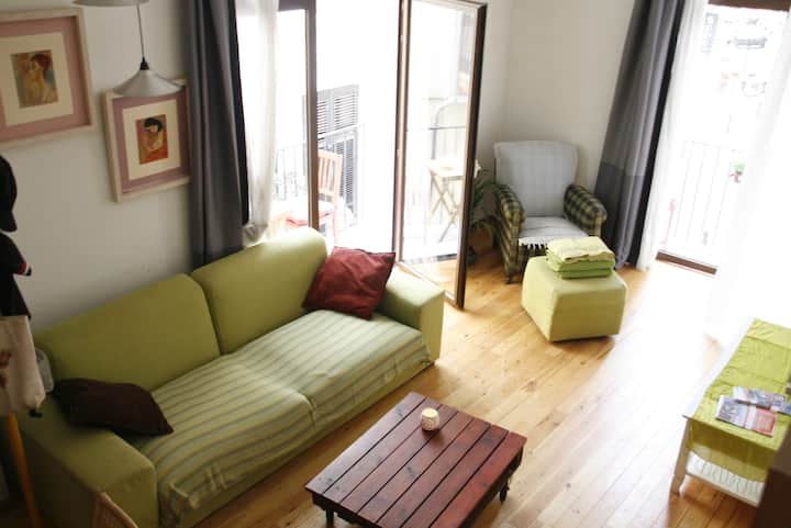 charming apt with wifi in downtown