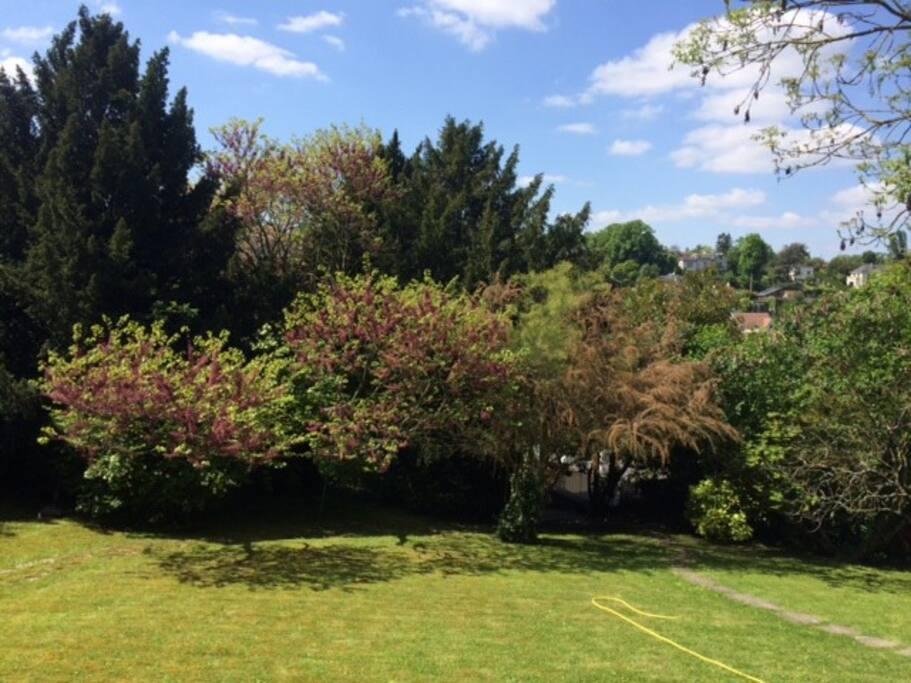 Une partie du jardin devant la maison