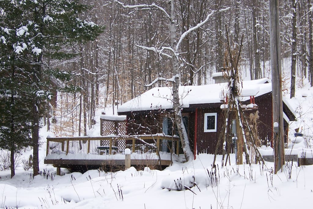 The cabin with the hill behind it.