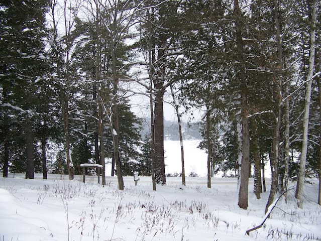 View of the front yard with the frozen lake just beyond
