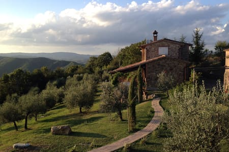 Panoramic country House & pool - San Venanzo
