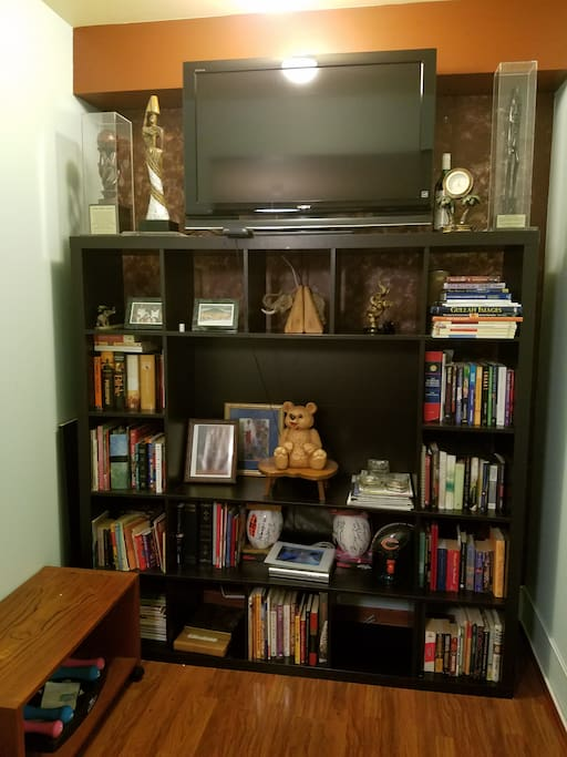 TV and library collection in bedroom
