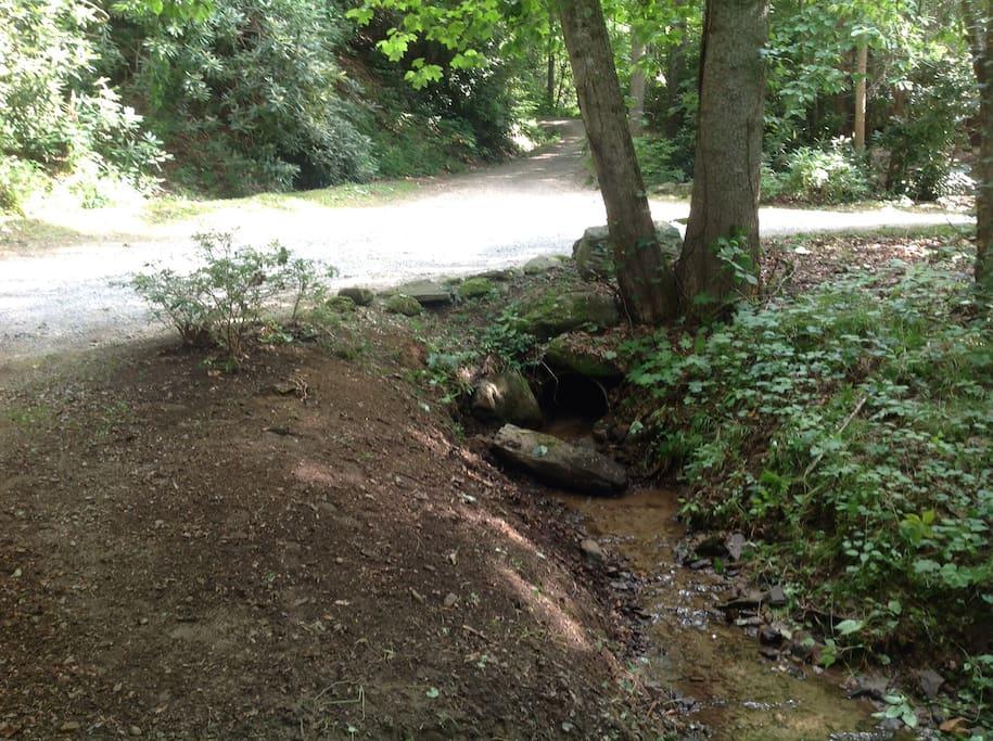 Creek across property
