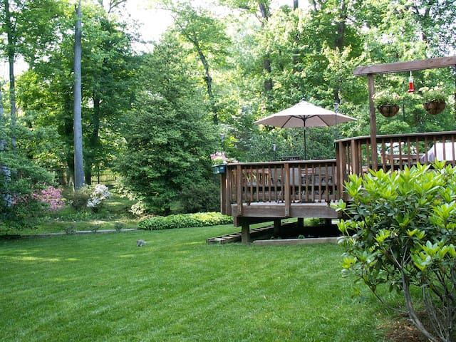 Wooded half acre home