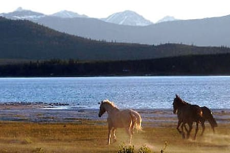 Guest Ranch & Wilderness Adventure - Tatla Lake