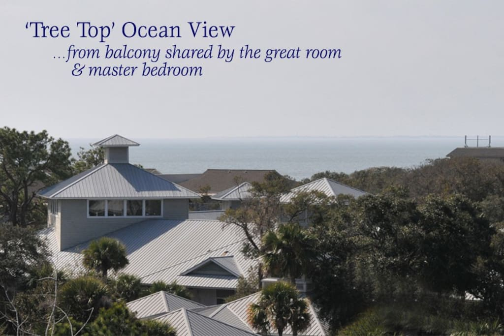 We offer a tree top ocean view from the balcony