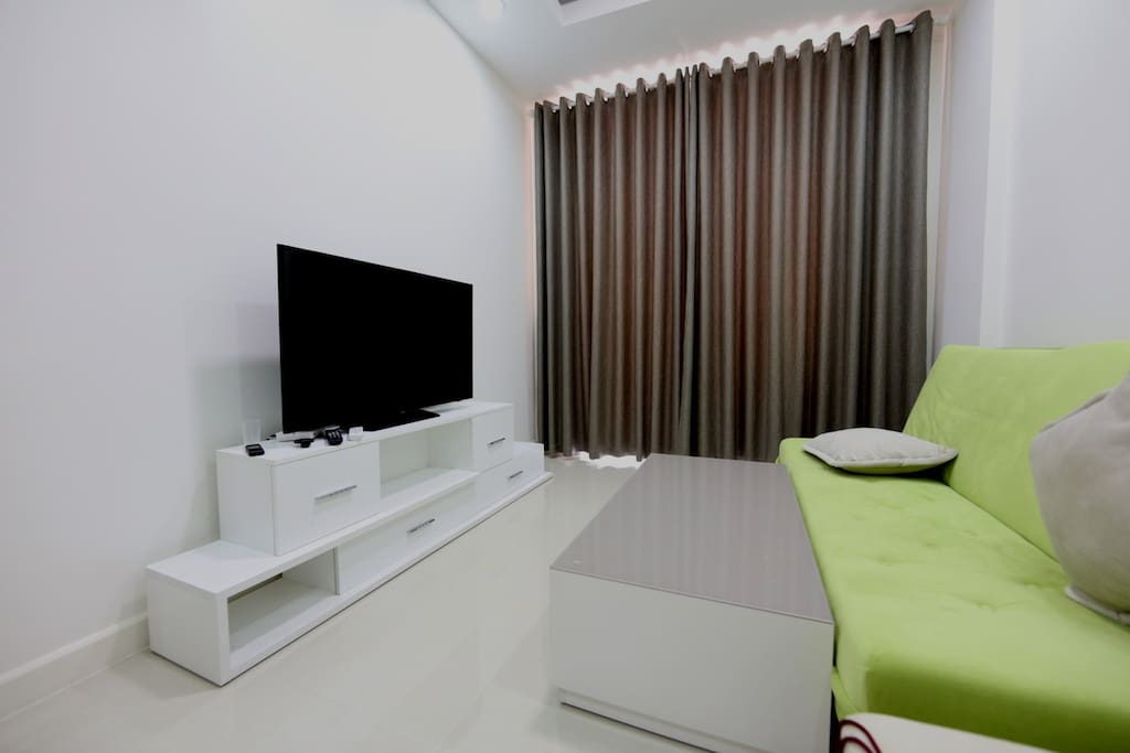 The living room with one sofabed, cable TV and nice balcony