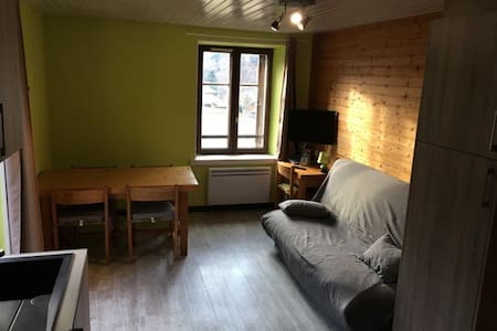 Charmant appartement proche pistes - 拉布雷斯 (La Bresse) - 公寓