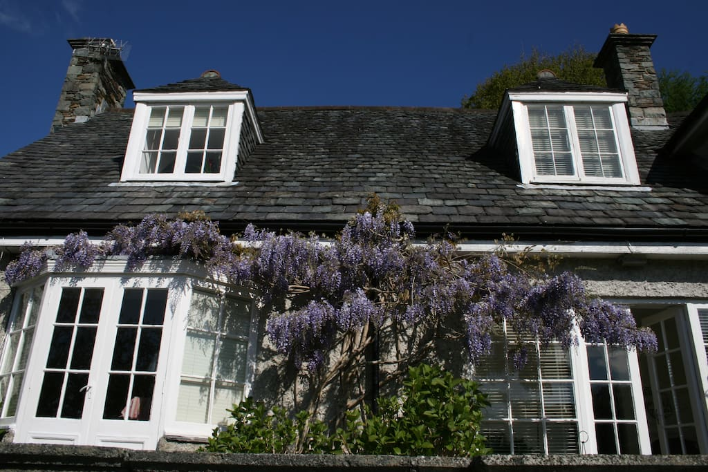 South facing view of the front of the house, with wisteria in bloom.