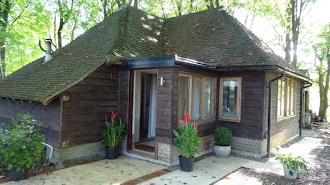 Beechwood Cottage , a secluded woodland hideaway