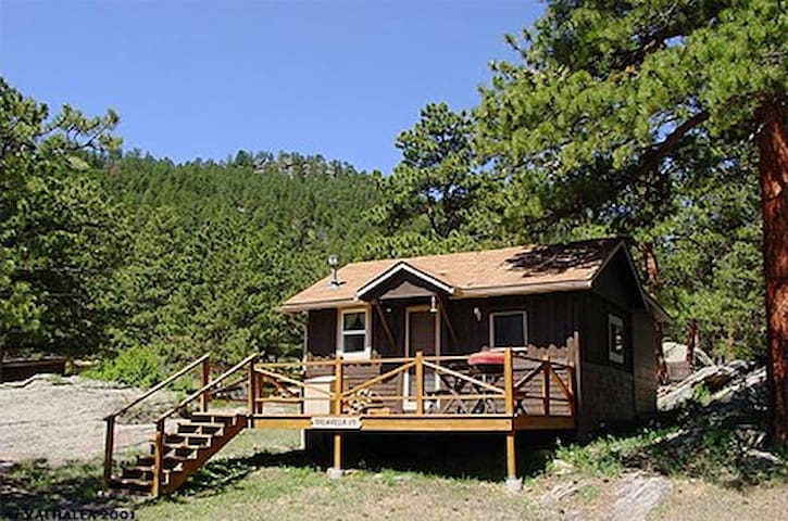 Vacation Cabin in Estes Park!