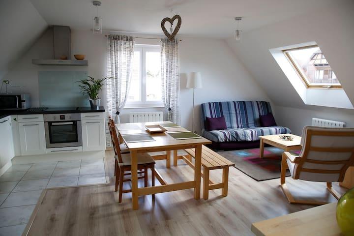 Bel appartement lumineux et tout équipé pour 4 - Nordhouse - Apartment