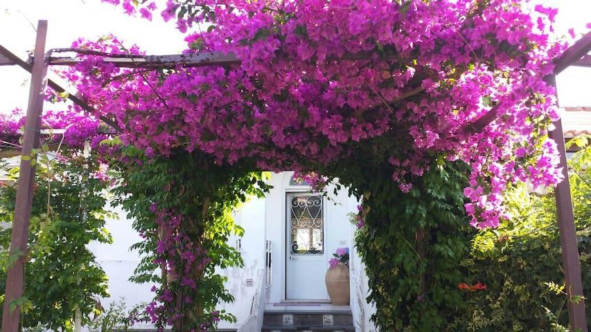 A quiet spot in wonderful Anacapri - Anacapri - Villa