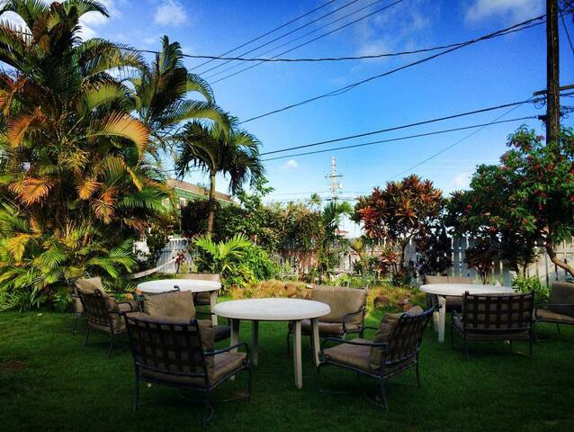 Honu'ea International Hostel Kauai 4