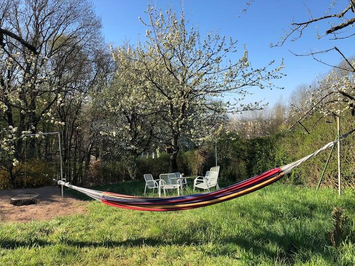 Garten-Wiese bei Stuttgart - Feiern/Zelten/Camping