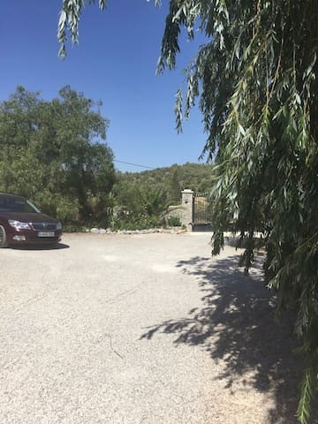 Our driveway which is safe and secure and has areas under the trees to shade your car