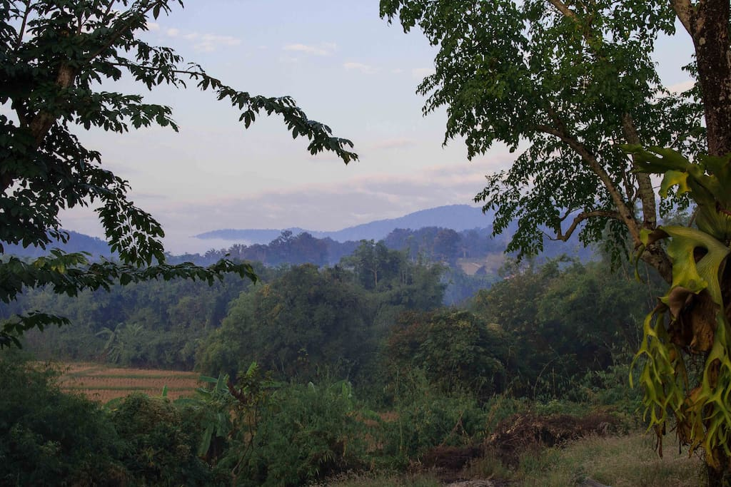 Our mountain view